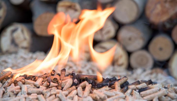 US green groups call on Ireland to extinguish biomass burning